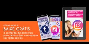 baixe grátis ebook facebook instagram para negócios